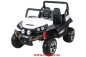 Preview: Maverick Offroad Buggy ALLRAD 2-Sitzer 4 x 45 Watt