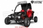 Mobile Preview: 125cc Midi Buggy Automatik + RG | 3 Scheibenbremsen | E-Start GOKart
